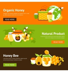 Honey flat banner set vector image