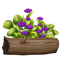 Little purple flowers on white background vector