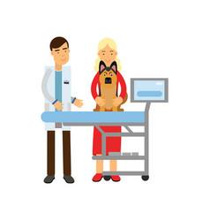 Veterinary doctor examining sheepdog in vet clinic vector