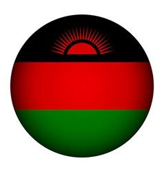 Malawi flag button vector image vector image