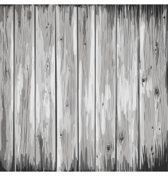 wood texture in gray colors vector image
