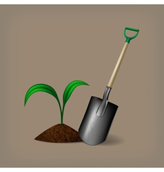 Garden spade and sprout vector image