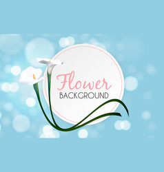 abstract floral background with calla flower vector image