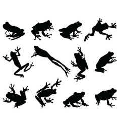 black silhouettes frog vector image
