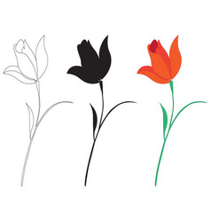 different images of flowers vector image