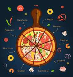 different ingredients of classical italian pizza vector image