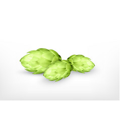 Hop plant icon vector
