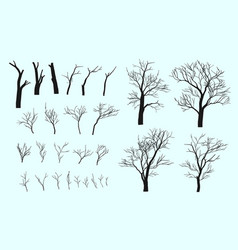Set branches and tree vector
