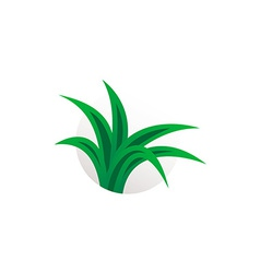 Simple aloe vera plant logo Herbal sign vector