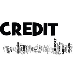 The easy way to build a great credit report text vector