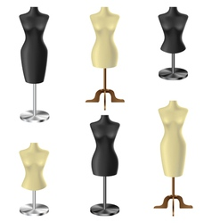 Black and white mannequin set vector image vector image