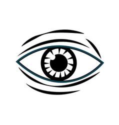 human eye vision optical design image vector image