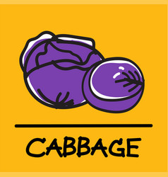 Cabbage hand-drawn style vector
