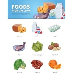 High calcium and vitamins foods vector