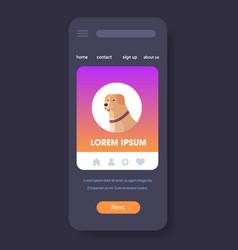 labrador retriever icon cute dog furry human vector image