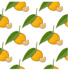 mandarin orange with segment colored hand drawn vector image