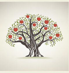 Old apple tree vector