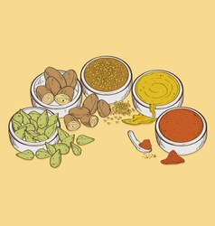 Spices food vector