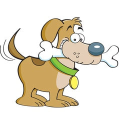 Cartoon Dog with a Bone vector image vector image