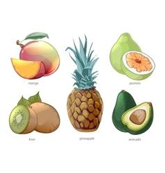 Cartoon exotic tropic fruits icons set vector image vector image