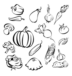 vegetables icon set sketch vector image vector image