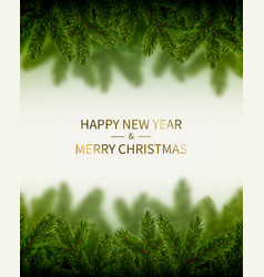 banner with christmas tree branches vector image