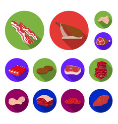 different meat flat icons in set collection for vector image