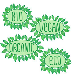 eco bio organic vegan sign in green oval badge vector image