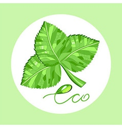 Environmentally friendly product vector