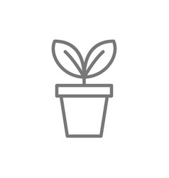 Flower in pot flowerpot line icon vector