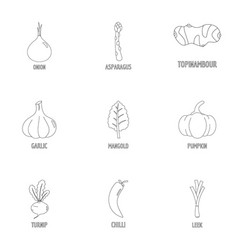 Healthy vegetarianism icons set outline style vector