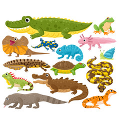 reptiles and amphibians cartoon frog chameleon vector image
