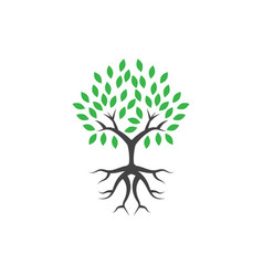 tree wellness logo icon design template vector image
