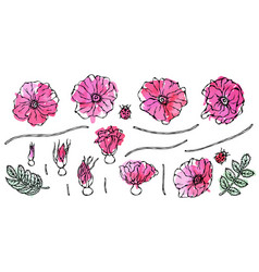 Watercolor painting of wild rose pink flower dog vector