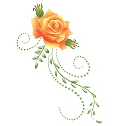 Yellow rose vector