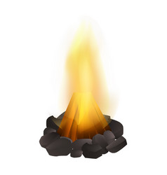 Campfire icon realistic style vector