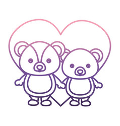 heart with cute couple of bears icon vector image