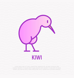 Kiwi bird thin line icon vector