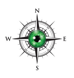 realistic eyeball on a compass vector image