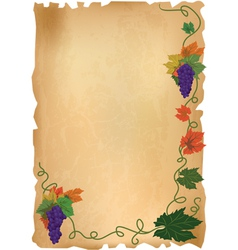 grapes on old paper vector image vector image