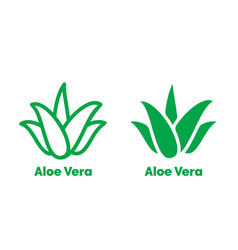 aloe vera label green leaf icon vector image