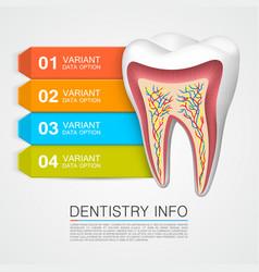 Dentistry info medical art vector