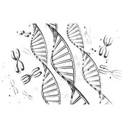 Genome dna dna structure eps vector