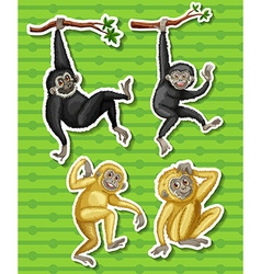 Gibbons in four different poses vector