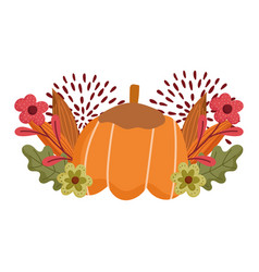 happy thanksgiving day pumpkin flowers foliage vector image
