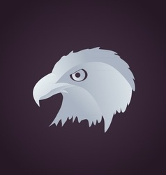 hawk head vector image