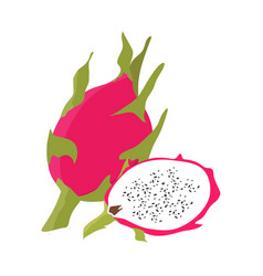 dragon fruit with slice flat design vector image