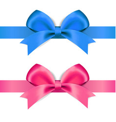 decorative blue and pink bow vector image