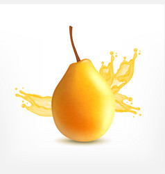 fresh pear with juice vector image