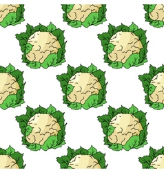 Fresh whole cauliflower seamless pattern vector image